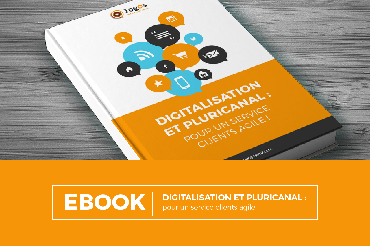 Digitalisation et pluricanal, l'ebook